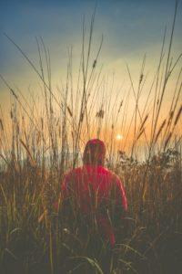 silvia-allari-psicoterapeuta-articoli